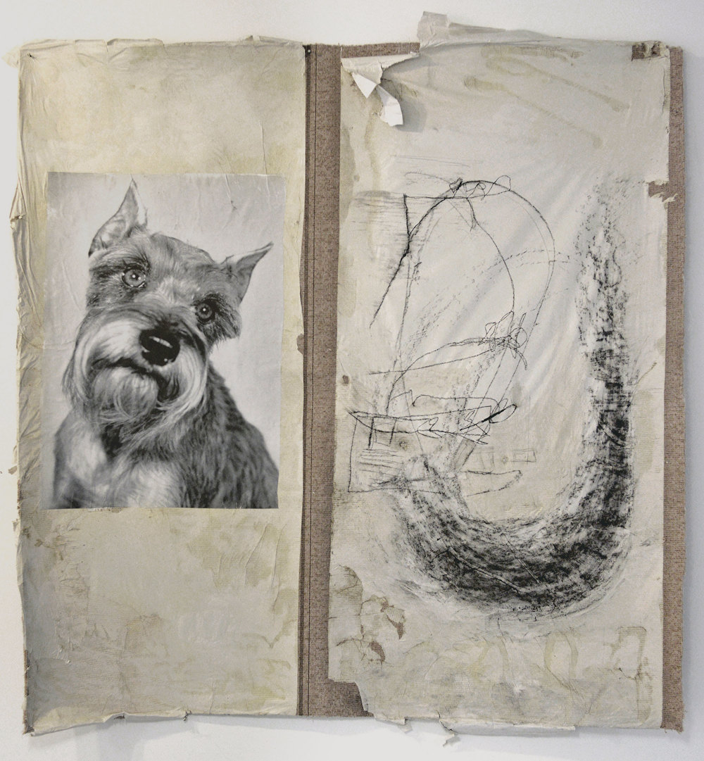 "Idiotic and Profound: The Schnauzer     found imagery, charcoal, and paper on carpet    90"" x 70"""