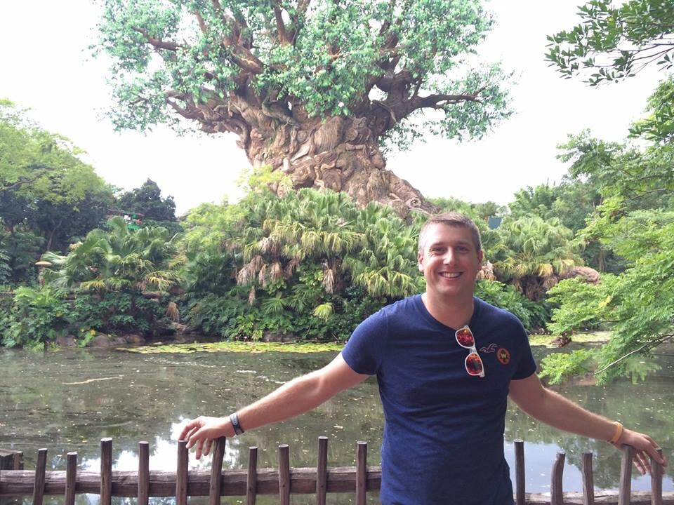 The Animal Kingdom's Tree of Life