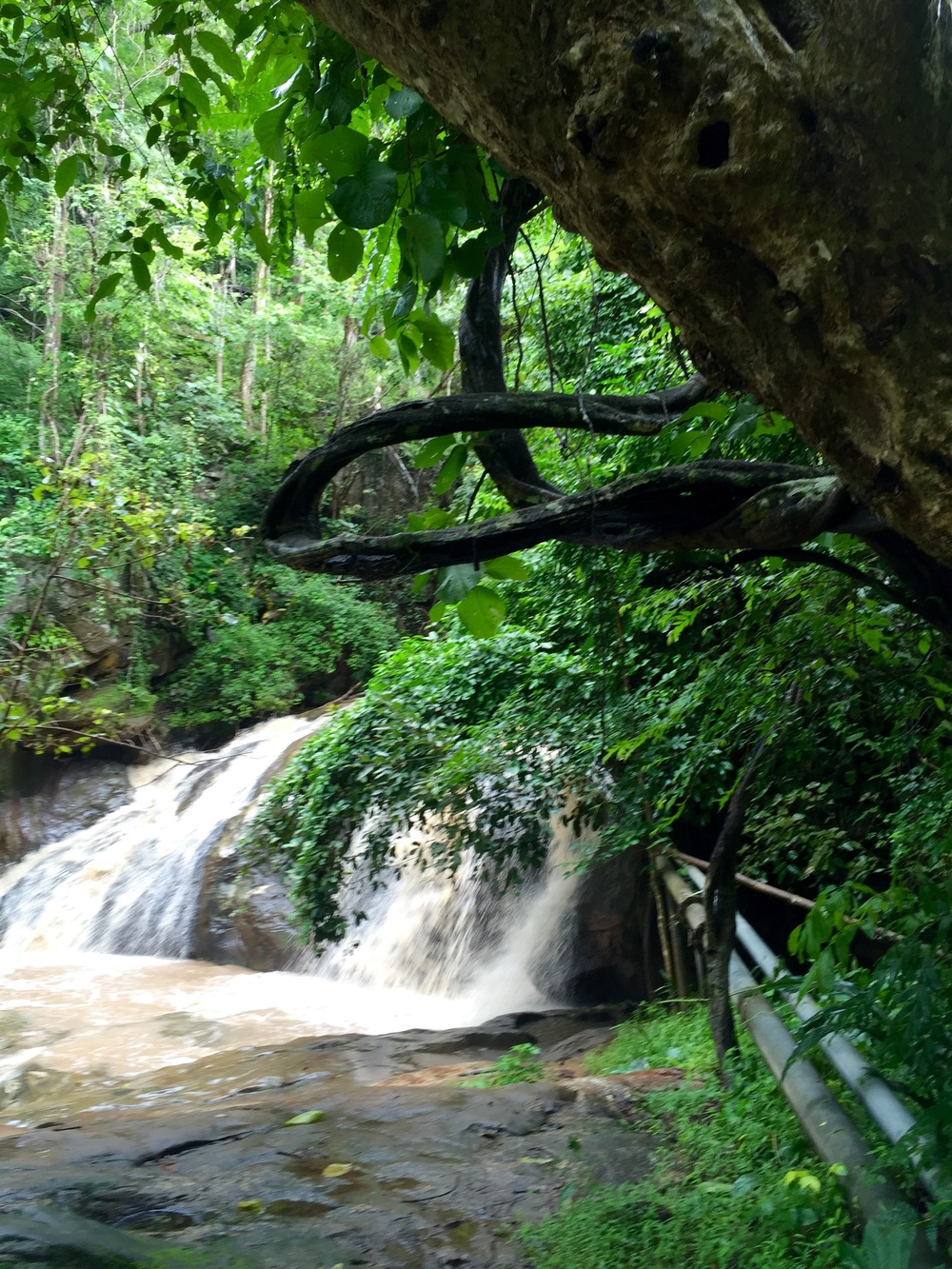 One more favorite pic from Mae Sa Waterfall Park