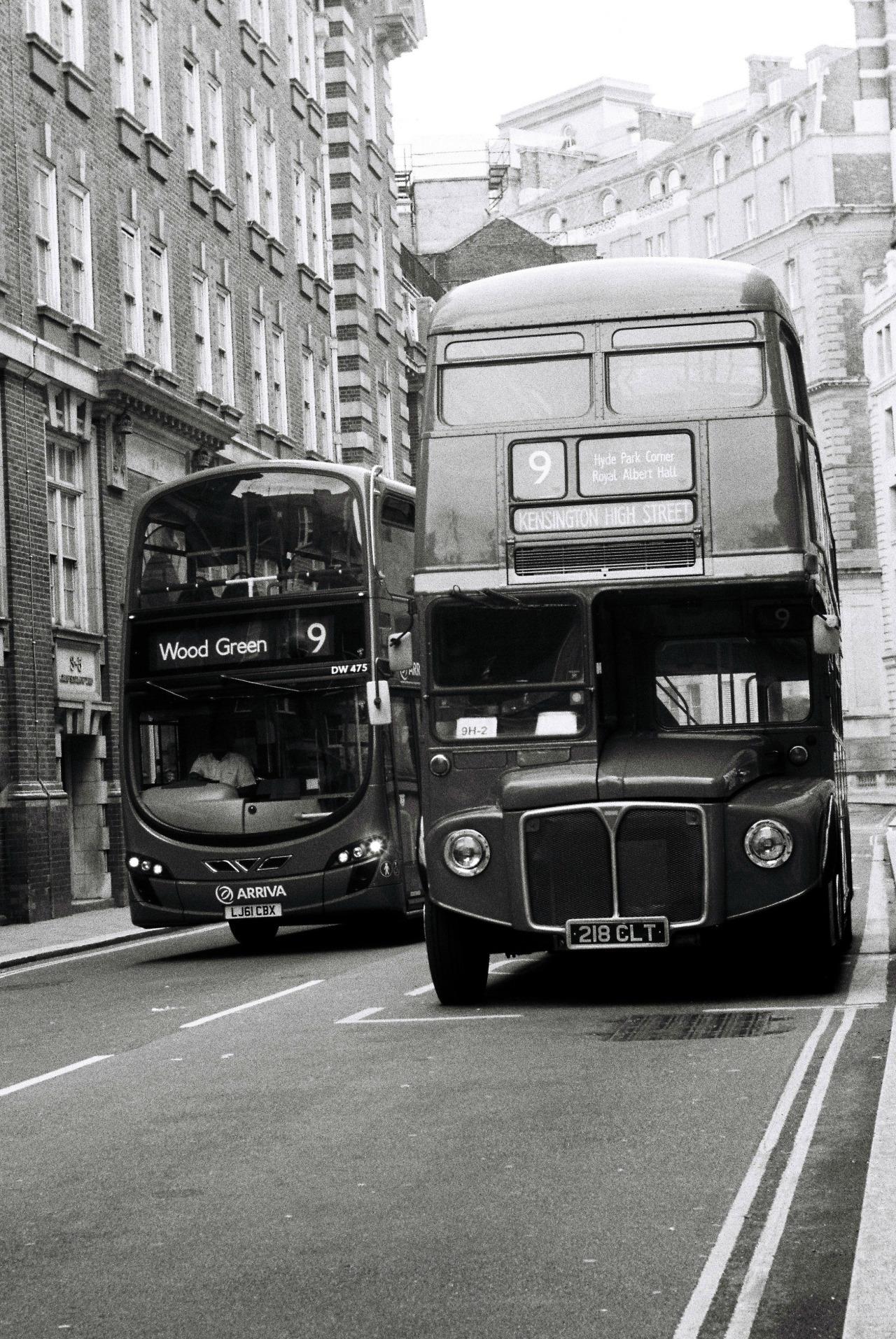 adore-london :     Photograph by elizamajewska
