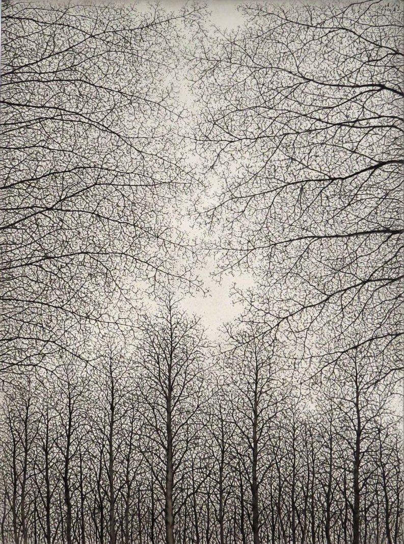 birdcagewalk :      iamjapanese : Sōichirō TOMIOKA (富岡惣一郎 Japanese, 1922-1994)    Trees       oil on canvas    via