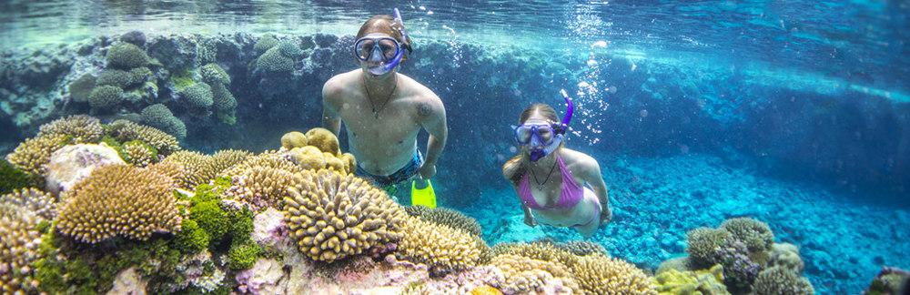 Ancient nude swim diving