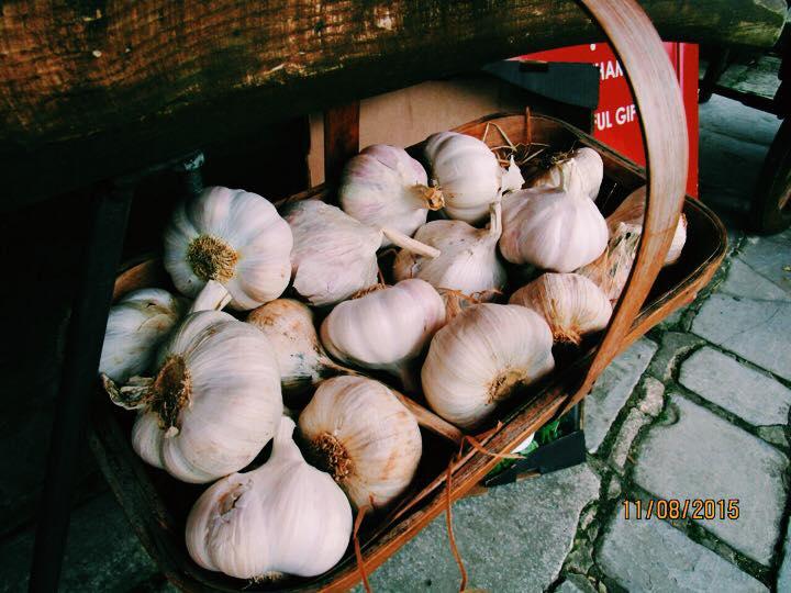 Garlic - Shaun Naen
