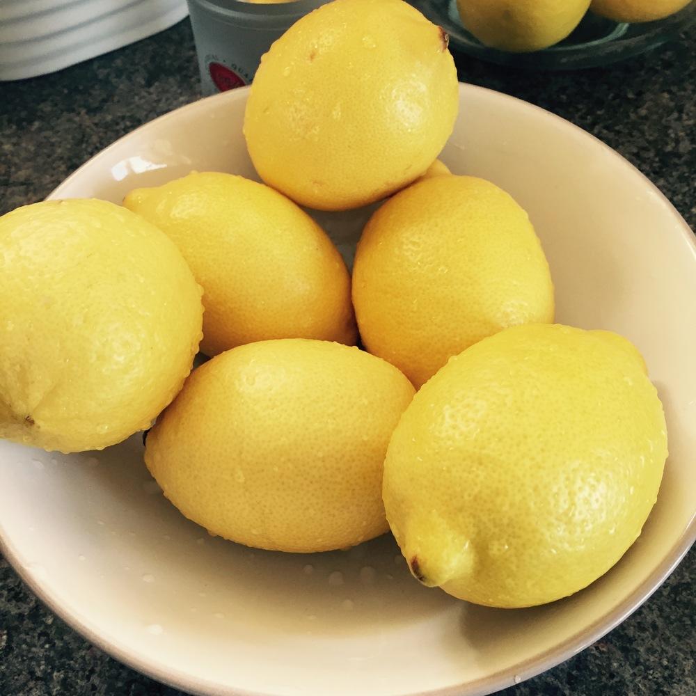 Rachel Redlaw limoncello lemons