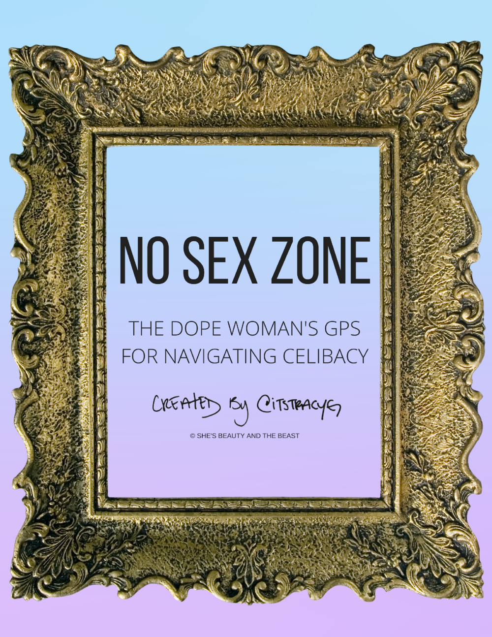 final-NO SEX ZONE.png