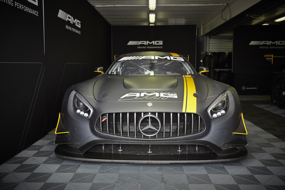 AMG-PhillipIsland-22-5-471.jpg