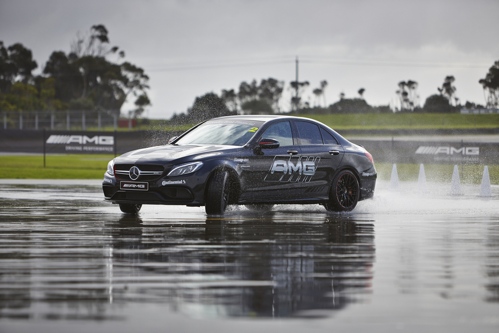 AMG-PhillipIsland-24-5-260.jpg