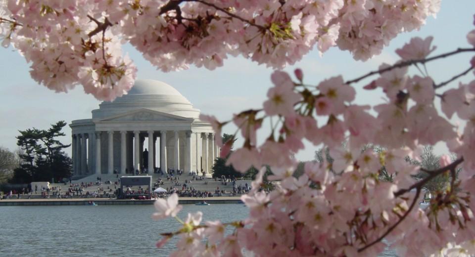 Photo via www.Washington.org