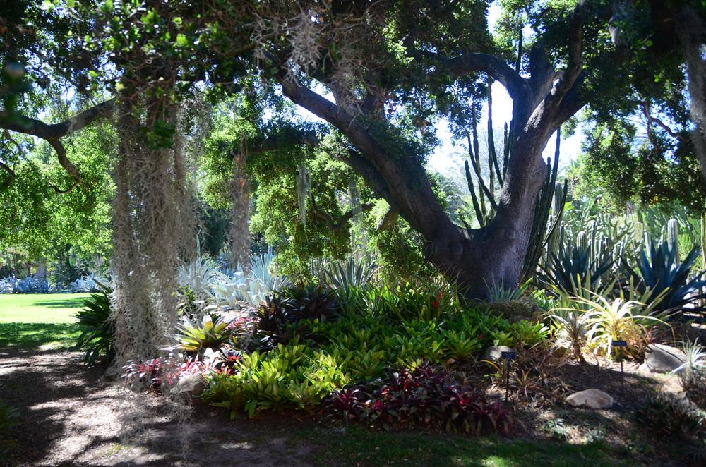 Ganna Walska Lotusland Gardens