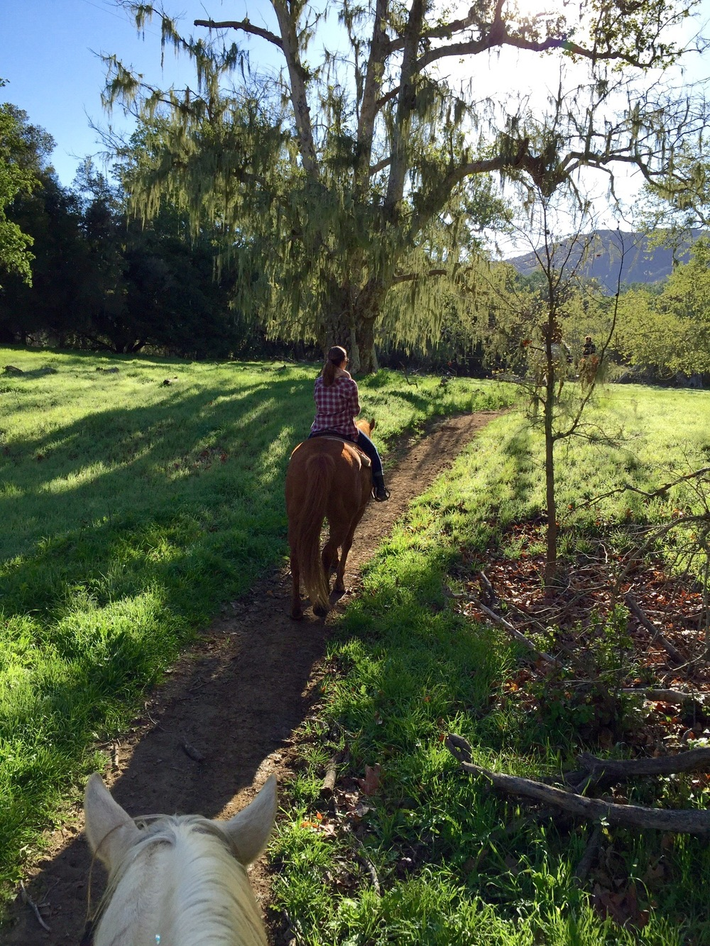 Alisal Guest Ranch and Resort Horseback Riding