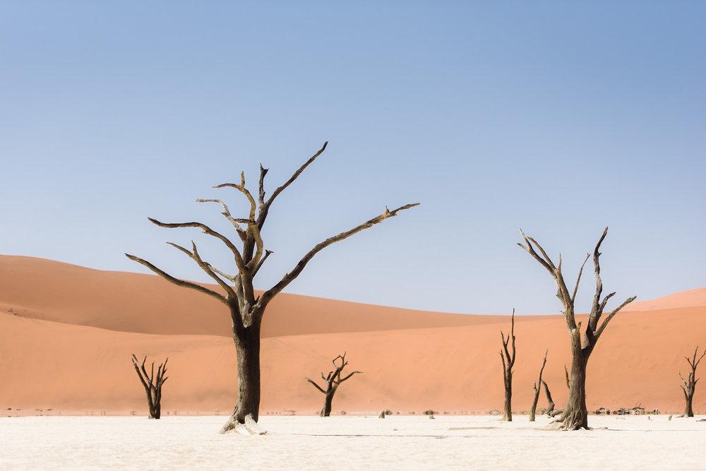 Namibiablog-8.jpg