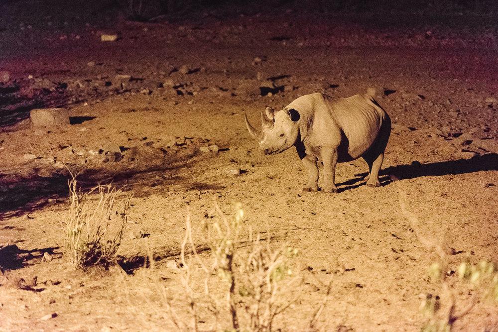 Namibiablog-44.jpg