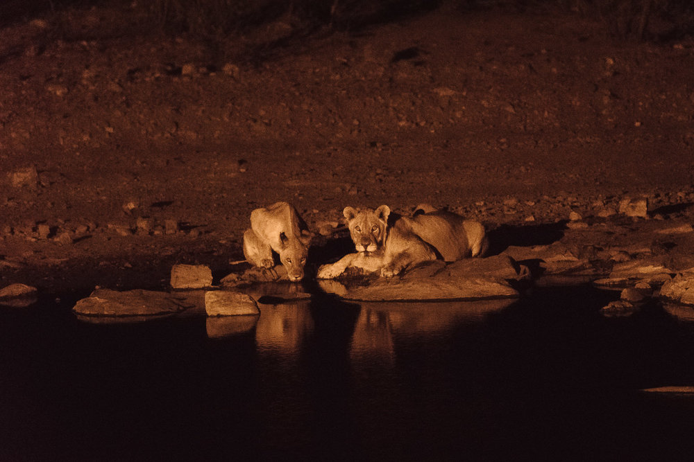 Namibiablog-49.jpg
