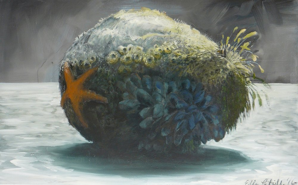 "Ellen Litwiller ""Still Life With Sea Star and Stone"""
