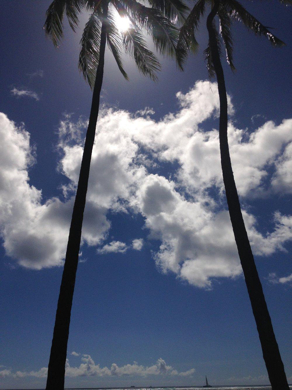 Yukari Kunisue Life Coaching in Hawaii