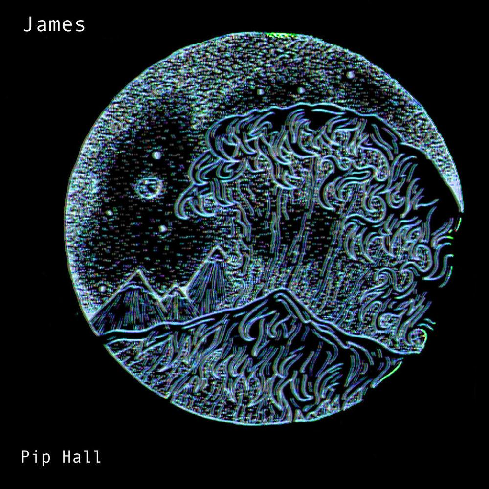Pip Hall James website image.jpg