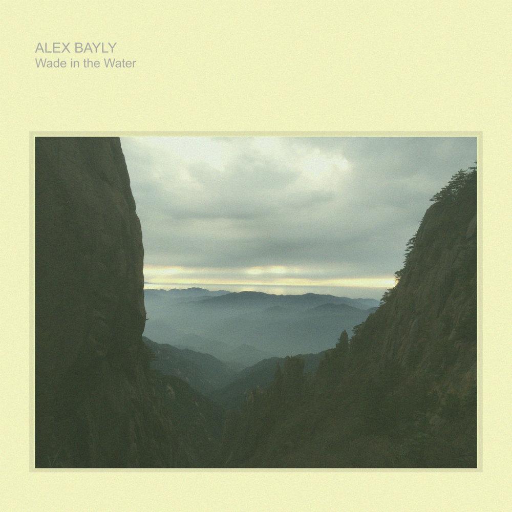 Alex Bayly WITW website image.jpg