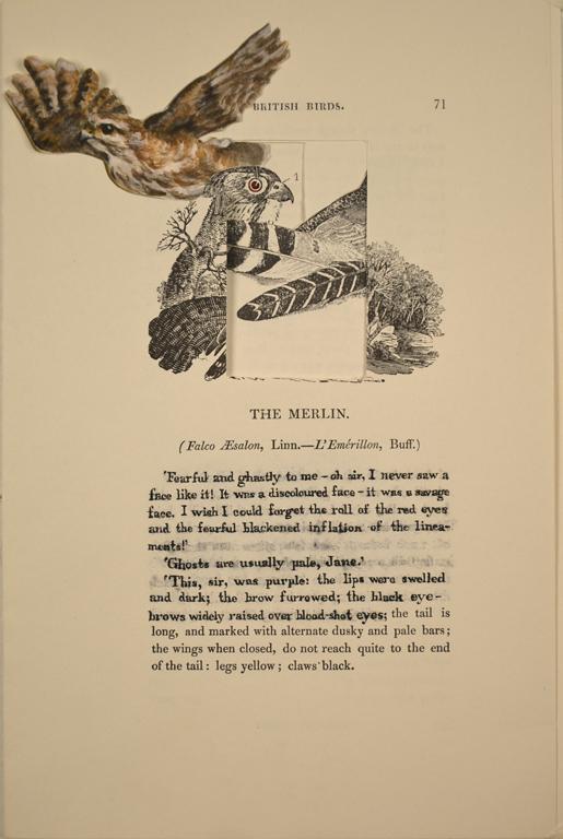 The Merlin (Bertha Mason)
