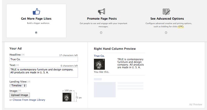 Facebook Ad Interface
