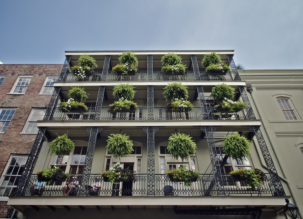 Plants and Balconies
