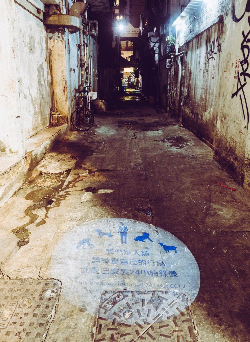 Back Alley CCTV