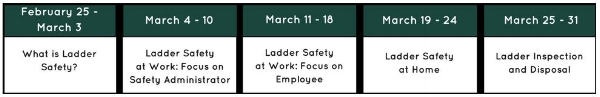 Ladder Safety Month Weekly Focus.JPG