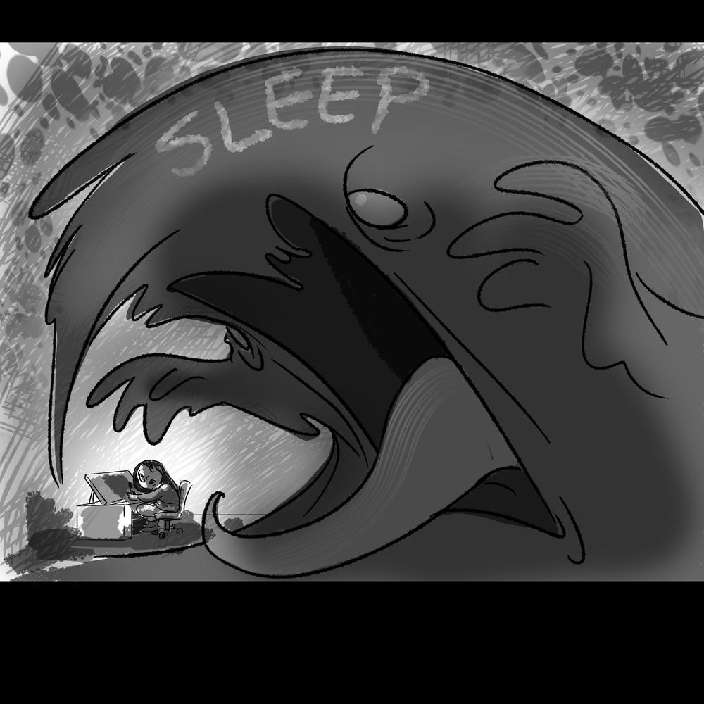 Sleeps.jpg