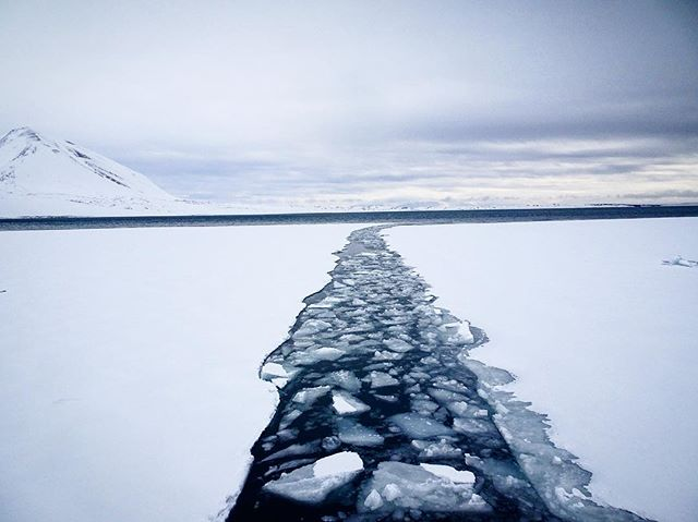 There are no paths here, you make your own. 1 month count down. #Svalbard #Expedition