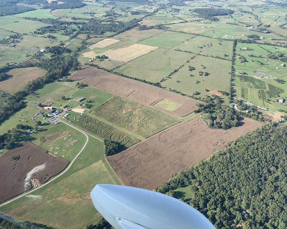 We saw many corn fields carved into fun fall mazes.