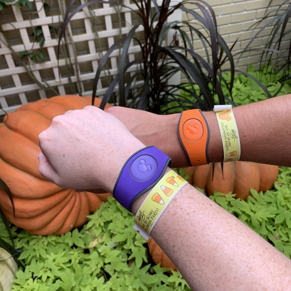 Coordinated Magic Bands and Party entrance bands.