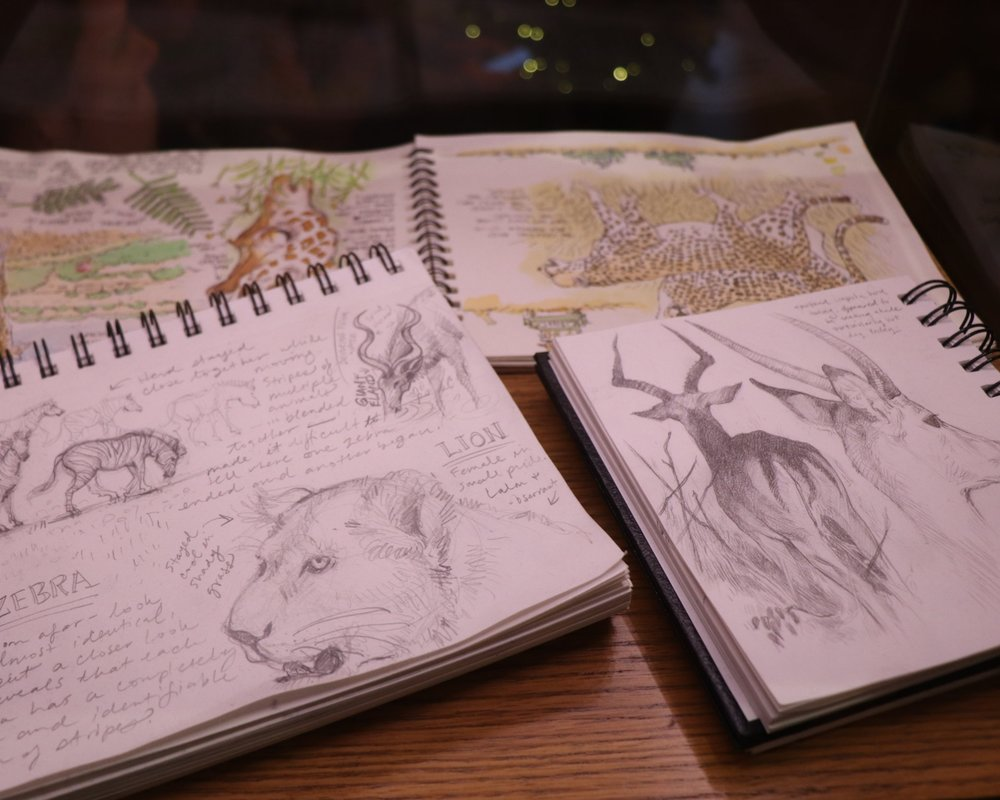 A peek at some travel journals.