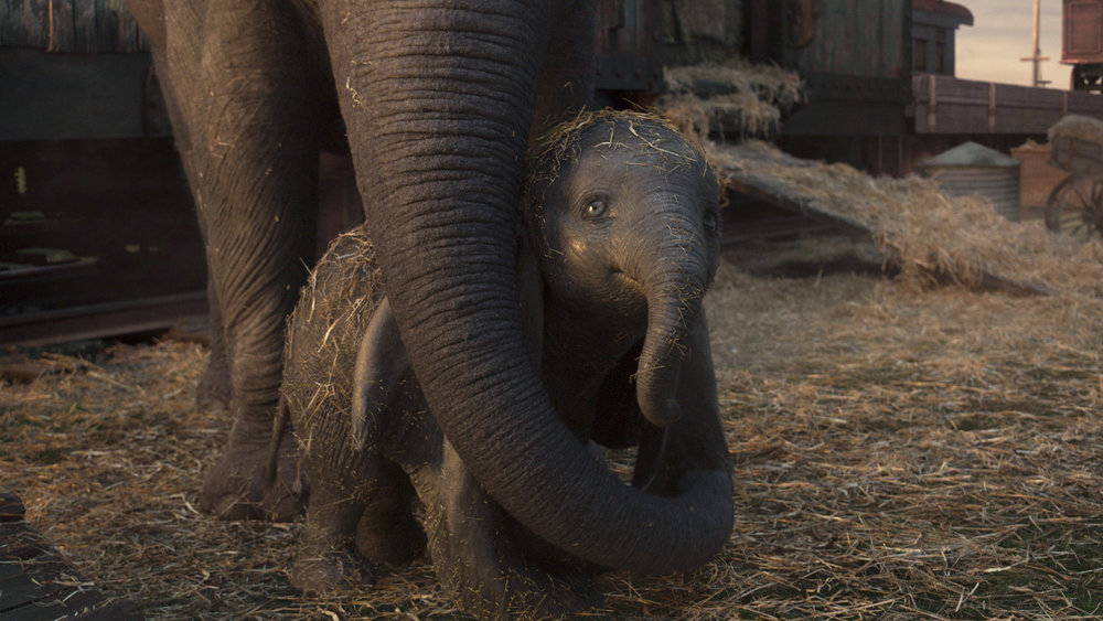 Lille Dumbo with his mama Mrs. Jumbo. How flippin' cute right?