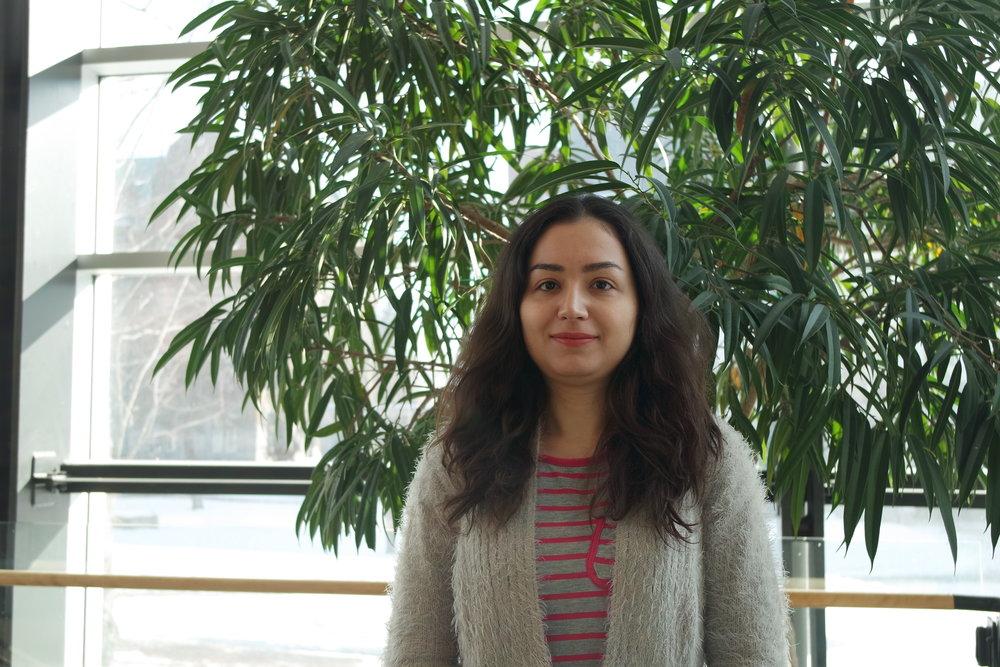 Sadaf Pour Iliaei   Master's student, 2016-2018