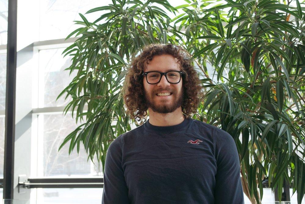 Nicholas Salama-Siroishka   Projet de spécialisation, 2017-2019