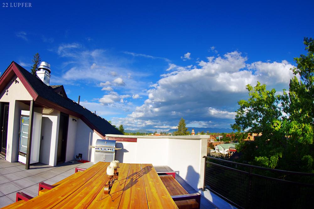 roof garden town view 2 1500 px.jpg