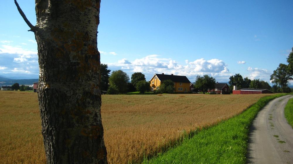 Jevnaker  farmland.jpg