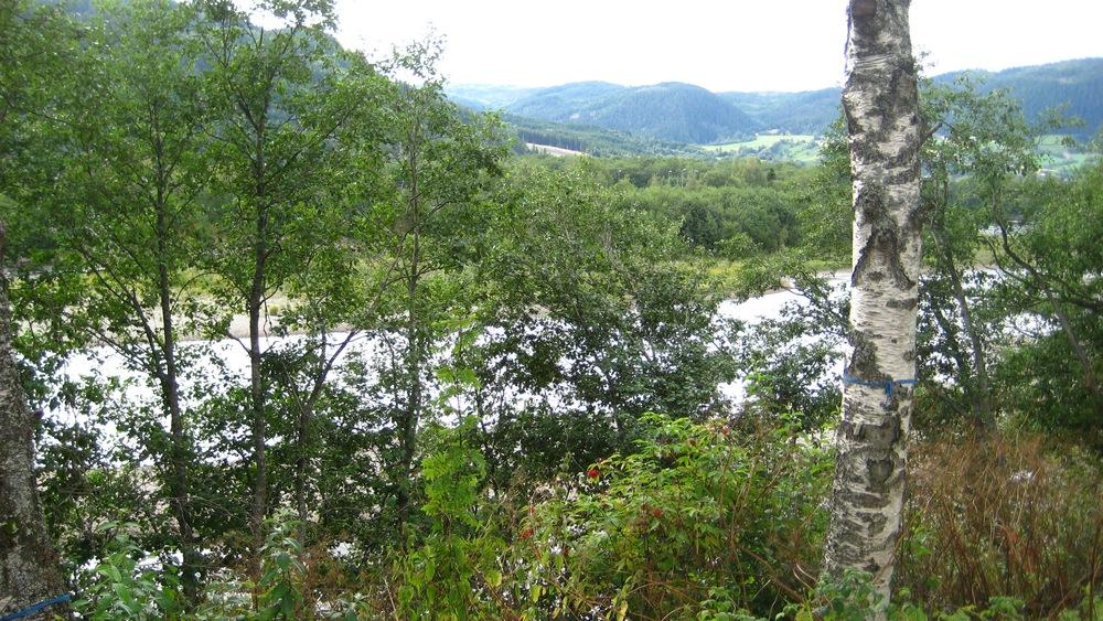 Orkanger south of Trondheim.jpg
