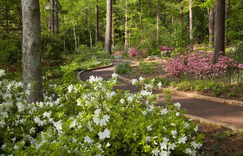 Duke University Scattering Ash Garden