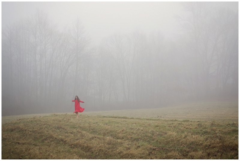 red foggy field