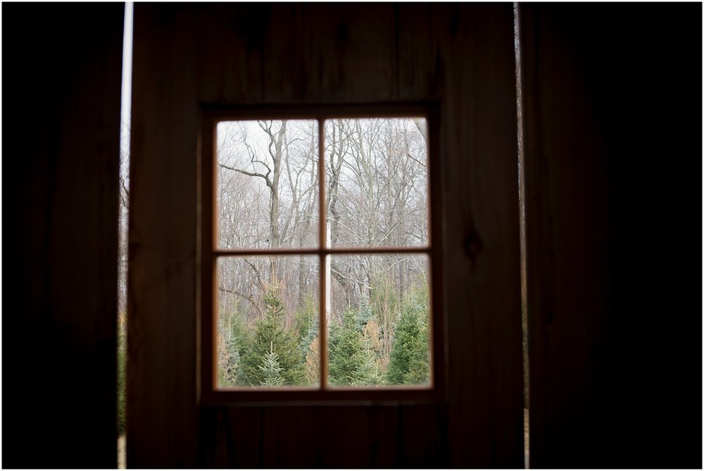 It was so cozy and warm in this barn, and the trees looked so lovely out the barn door!