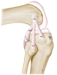 Anterolateral Ligament Oklahoma City