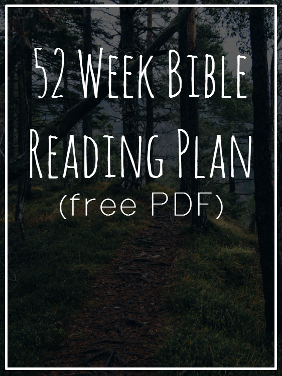 A free printable PDF to help you reach the goal of reading the Bible in one year! Broken into small parts over 52 weeks! Love this :)