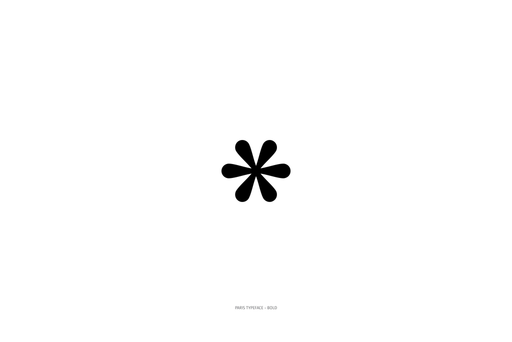 Paris Typeface Bold-72.jpg