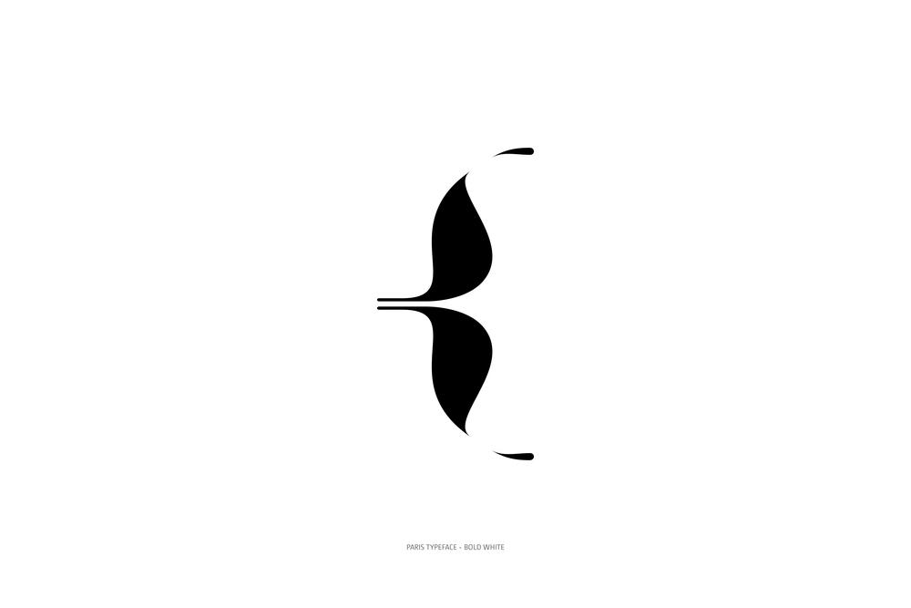 Paris Typeface Bold White-67.jpg