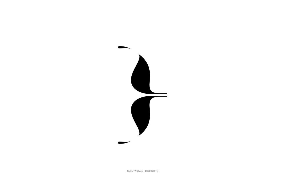 Paris Typeface Bold White-68.jpg