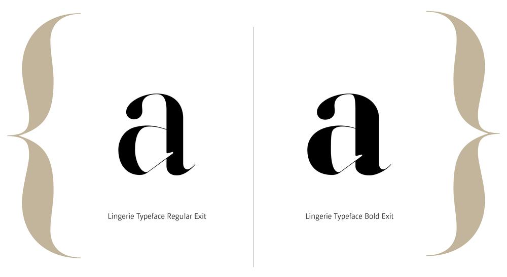 Lingerie Typeface Styles-14.jpg