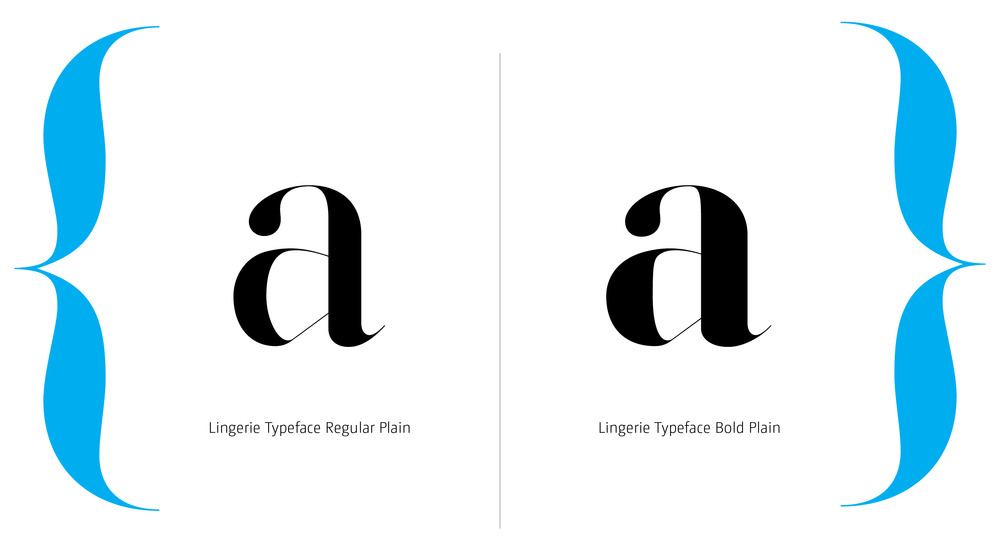 Lingerie Typeface Styles-13.jpg