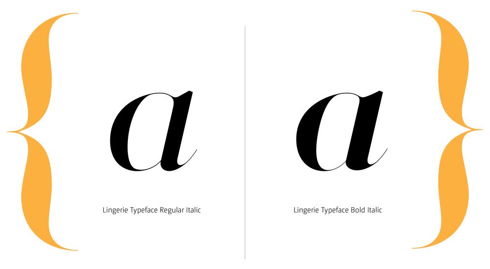 Lingerie Typeface Styles-16.jpg