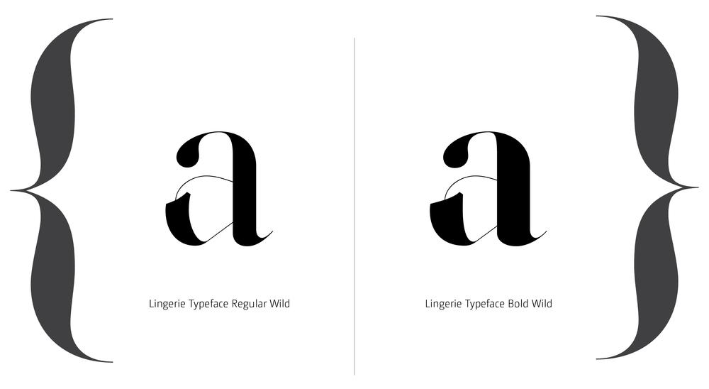 Lingerie Typeface Styles-17.jpg