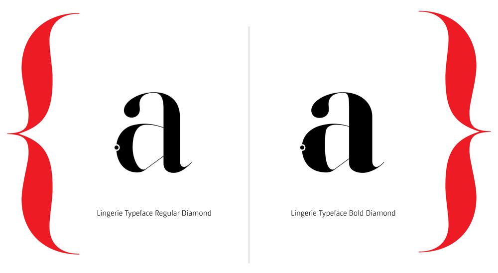 Lingerie Typeface Styles-18.jpg